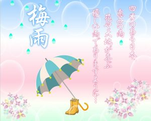 梅雨入りです💧💧💧
